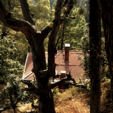cabin_in_the_woods_shimla