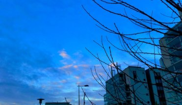 blue-moment-early-morning-6