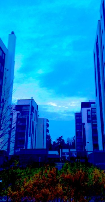 blue-moment-early-morning-8