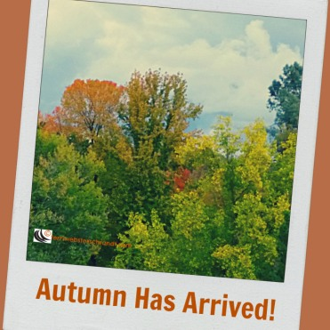autumn-has-arrived