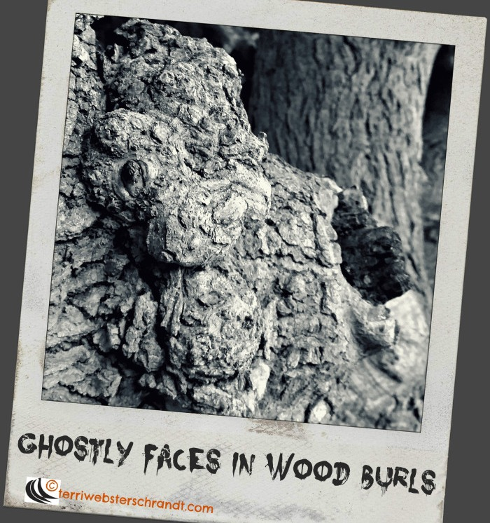 ghostly-faces-in-wood